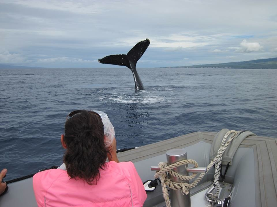 Every whale watch is different!
